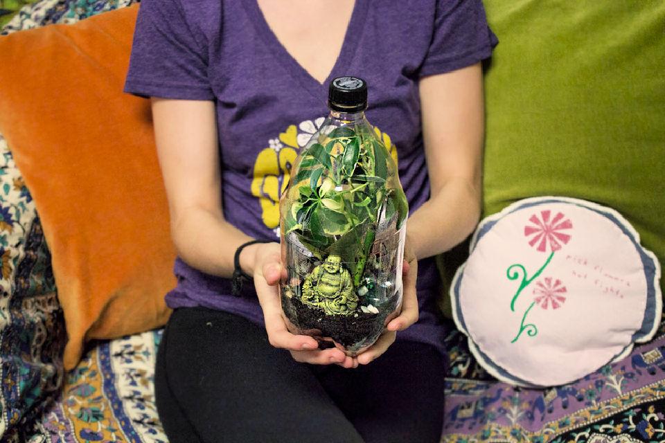 DIY Plastic Bottle Terrarium