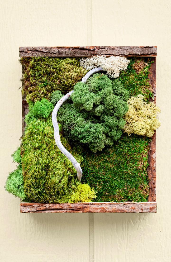 How to Make a Moss Wall Art