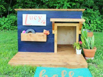 Modern DIY Dog House