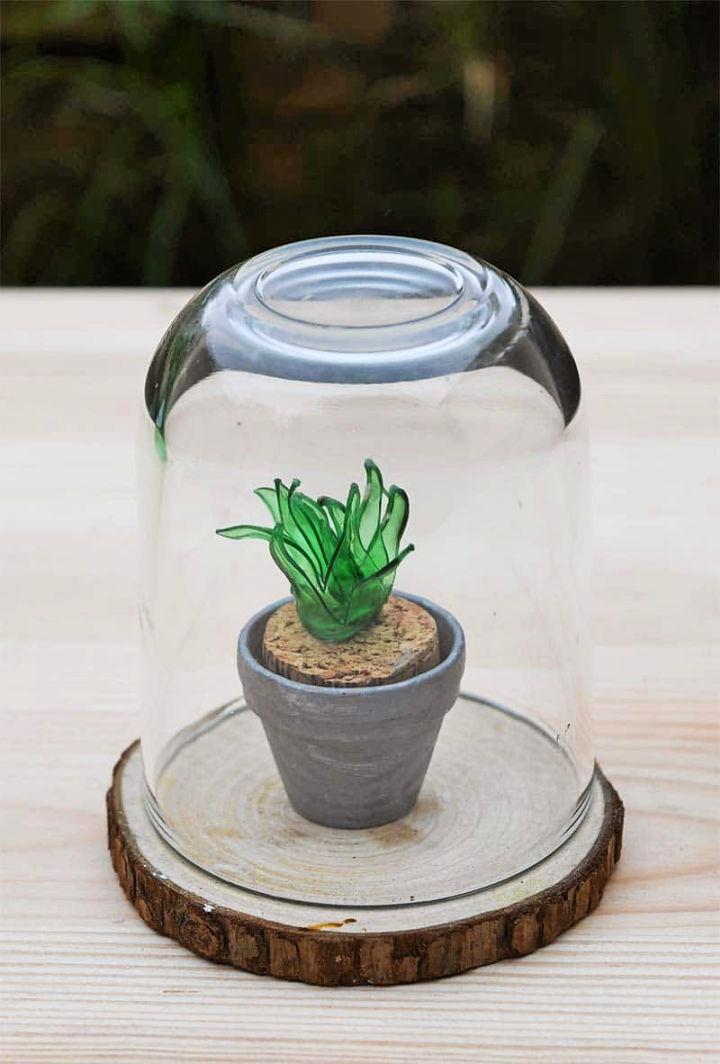 Plastic Bottle Faux Succulents Terrarium