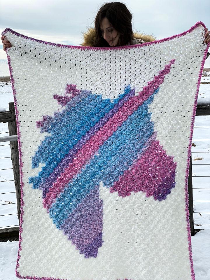 Unicorn Dreams Crochet Blanket