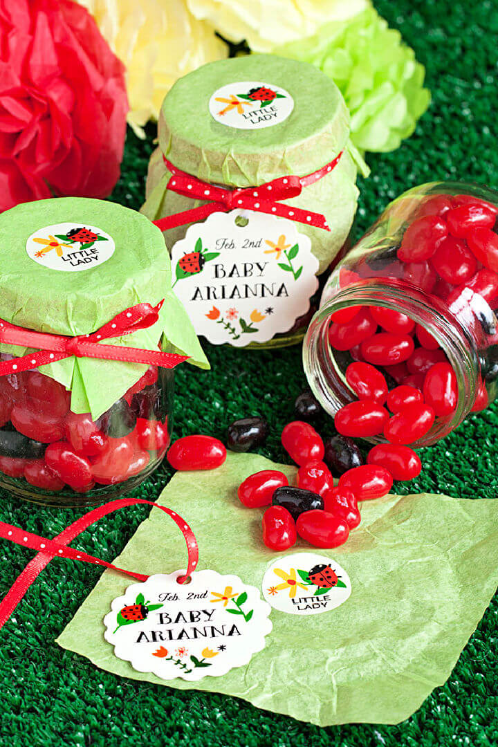 Baby Shower Ladybug Themed Party Favor