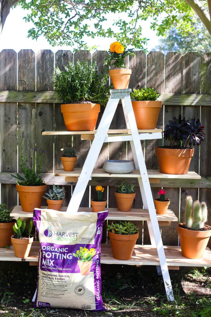 Tiered Plant Stand from an Old Ladder