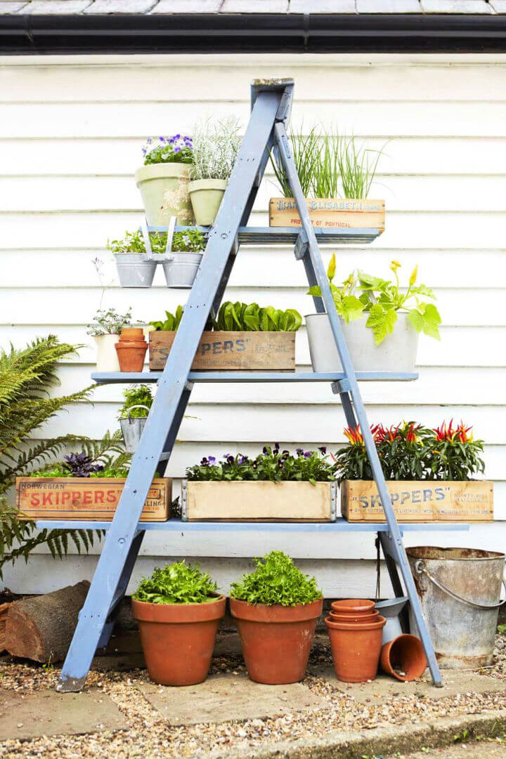 Towering Ladder Planter Stand